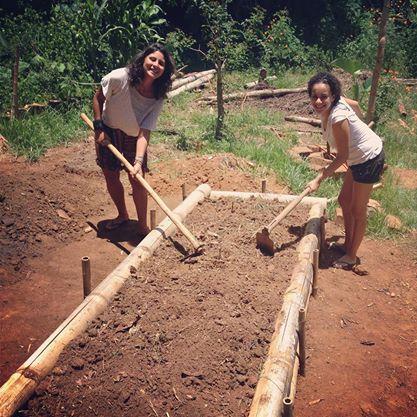 Trabalhando na recuperação da horta