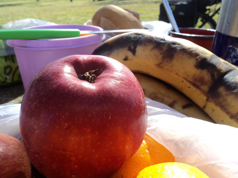 Frutas, viagem de bicicleta, projeto ciclos