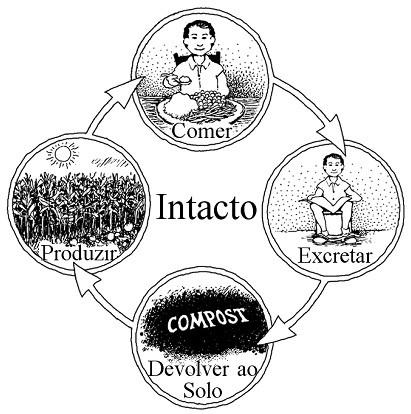 O ciclo de nutrientes humano completo