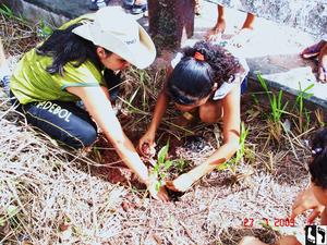 Atividade de plantio de árvores durante o Projeto Rondon, em Alenquer, Pará