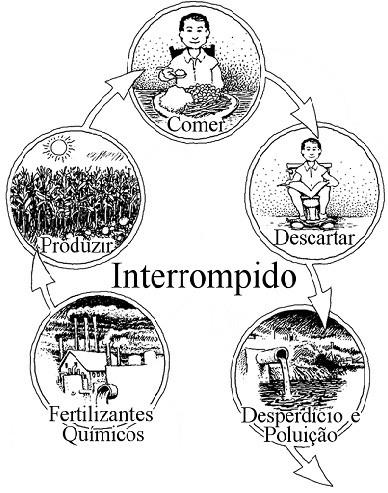 O ciclo de nutrientes humano interrompido
