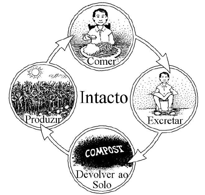 Fechando o ciclo de nutrientes.