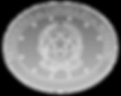 Ovale_Presidenza_Consiglio.png
