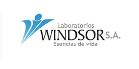 LOGO WINDSOR 2019.png