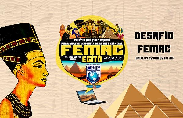 DESAFIO FEMAC.jpg