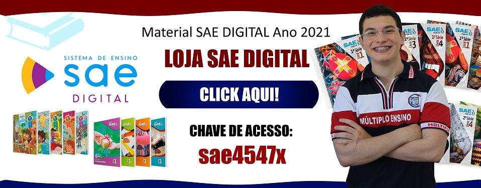 Banner SAE Digital 2021.jpg
