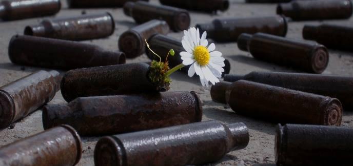 fleuriste :A fleur de pot