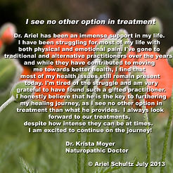 Testimony by Dr Krista Moyer