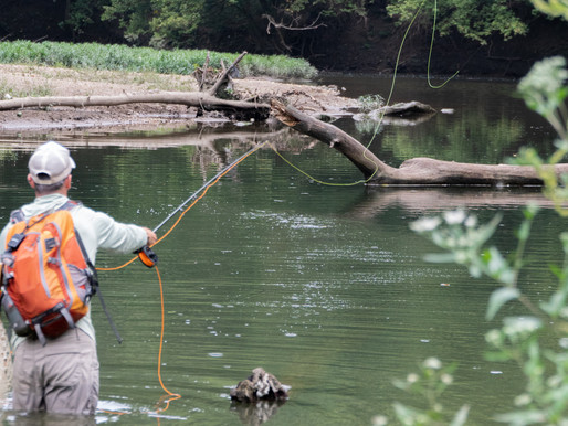 Where Is Fly Fishing Popular?