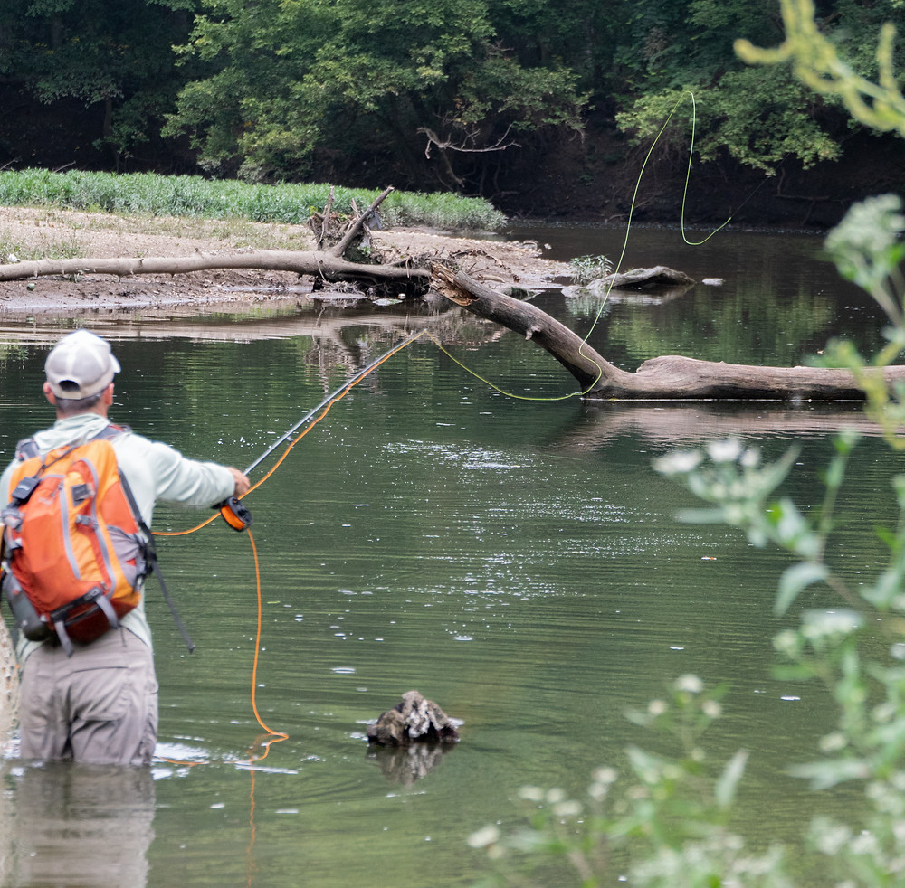 Fly fishing for river smallmouth bass