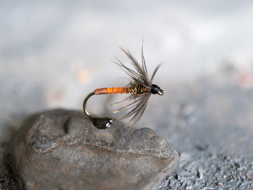 Wet Flies: Tactics and Techniques for Multiple Fish Species