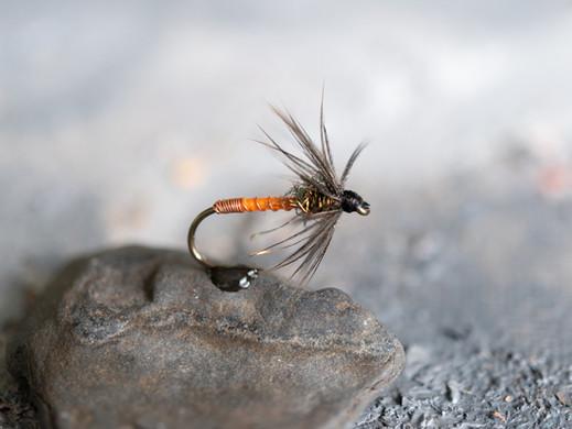 Wet Flies: Tactics and Techniques for Multiple Fish Species