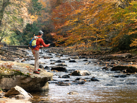 Is Fly Fishing an Art?
