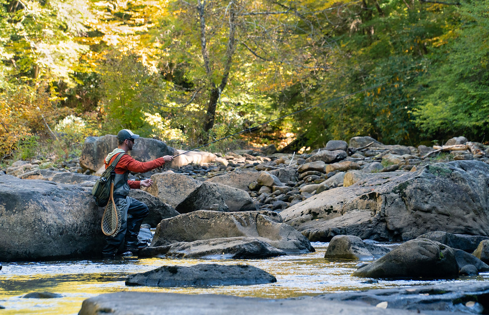 Fly fishing the Cranberry River WV