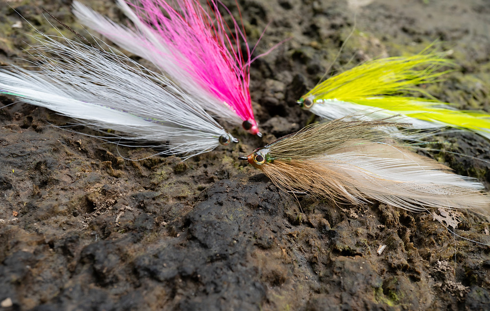 Smallmouth bass streamer patterns