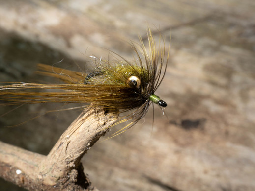 Fly Fishing the Olentangy River