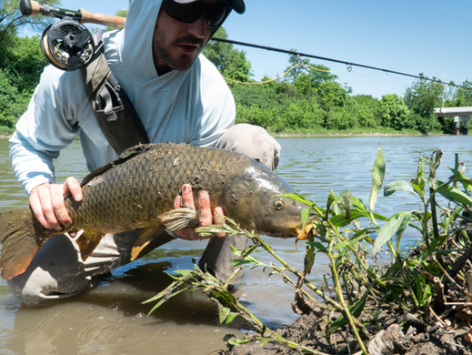 Muck, Sewers, and a Beautiful Fly Fishing Experience