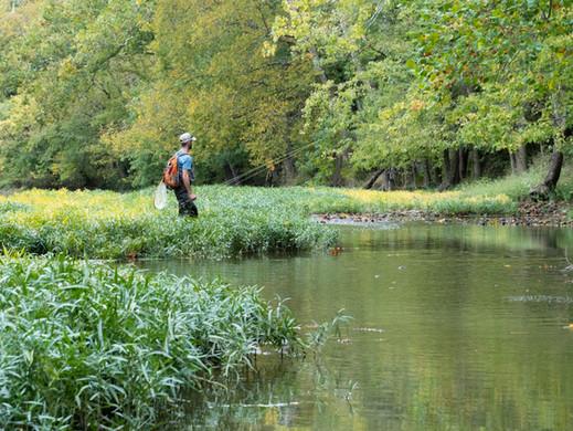 An Endangered Scenic River