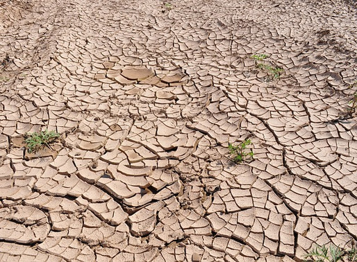 Drought Fund: Public Schools Missed Out Again!