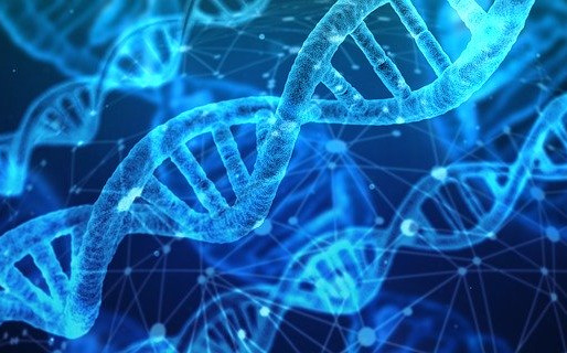 Genetic Modification – Separating Science from Science Fiction
