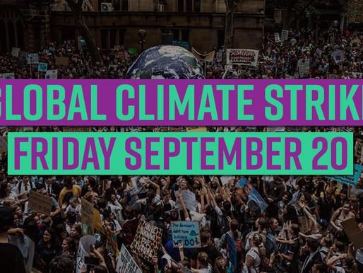 School Strike 4 Climate Change Gallery