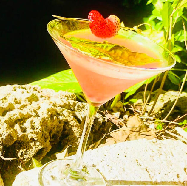 Sunkissed Cocktails