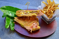 Grilled Panini and Truffle Fries
