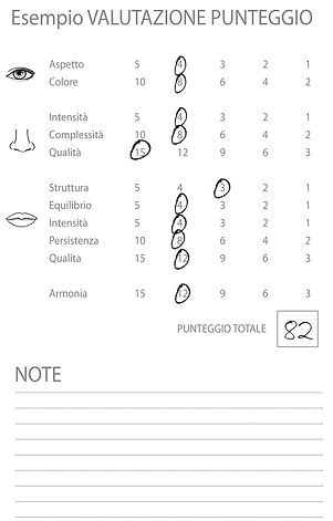 Degustabook Wine Professional esempio sc