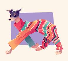 Greyhound in a turtleneck