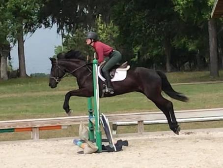 Dark Horse Solastah
