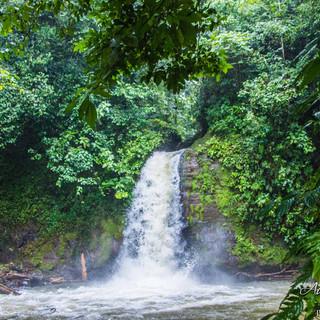 Leaves&Lizards Costa Rica_Slide Presenta