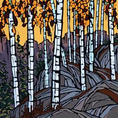 Birch Mountain 12x12