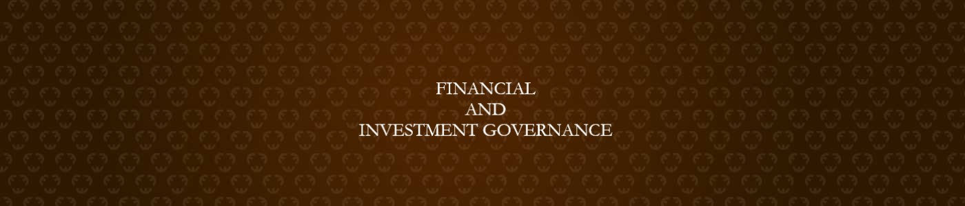 Financial and Investment Governance