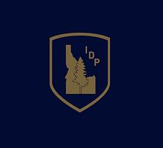 BlueGoldIDP (1).png