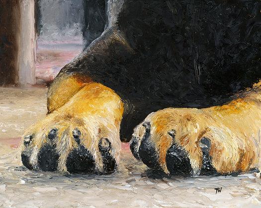 Rotti Paws