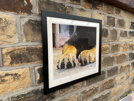 Framed print of Rottweiler Paws