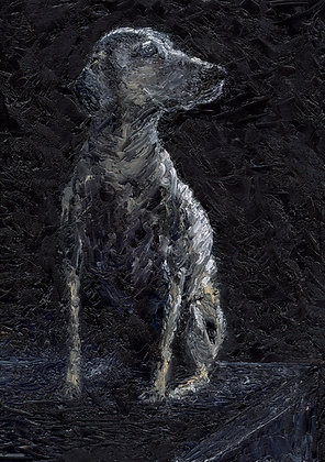 Monochrome dog