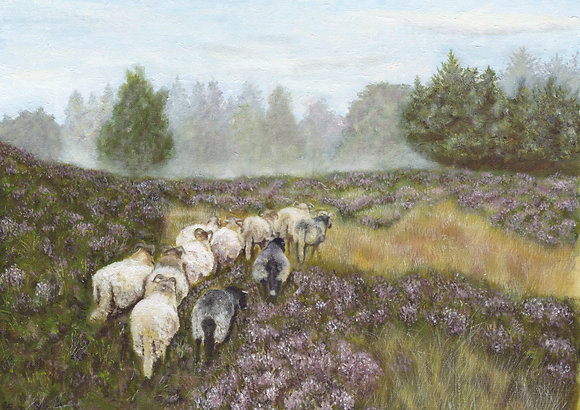 Yorkshire Landscape with Sheep