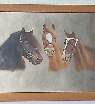 3 x horses.jpg