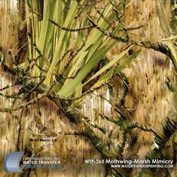 WTP-265-Mothwing-Marsh-Mimicry.jpg