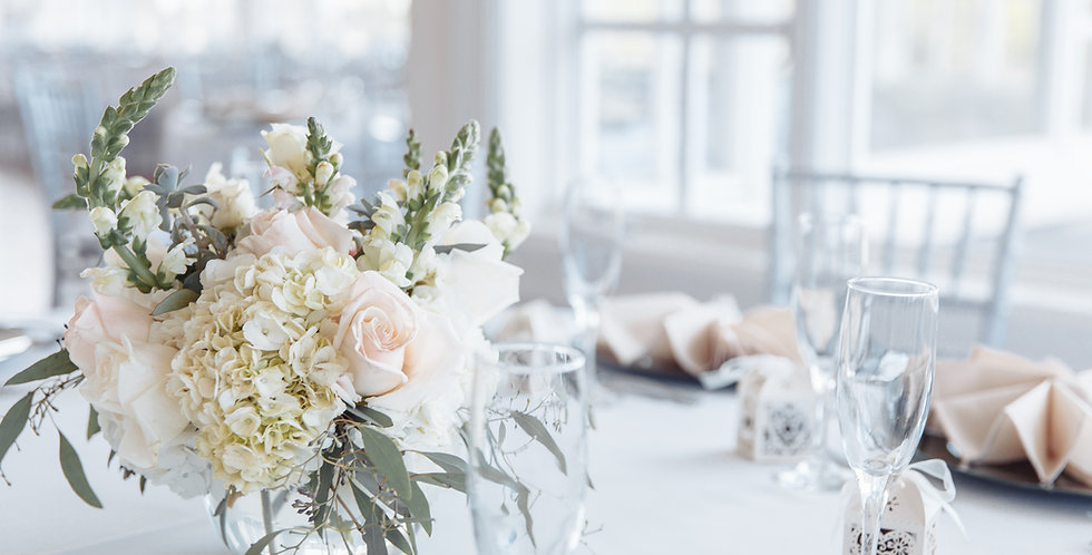 Gather  50 to 100 wedding