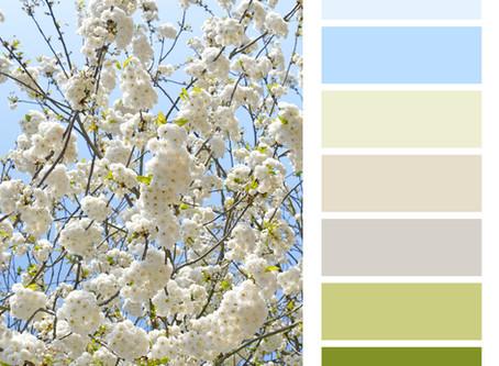 Design Board with White Blossom