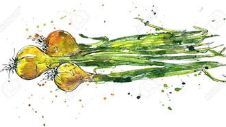 El hombre que enviaba algas, cebollas y otros 32.000 curiosos objetos para cachondearse de Correos (