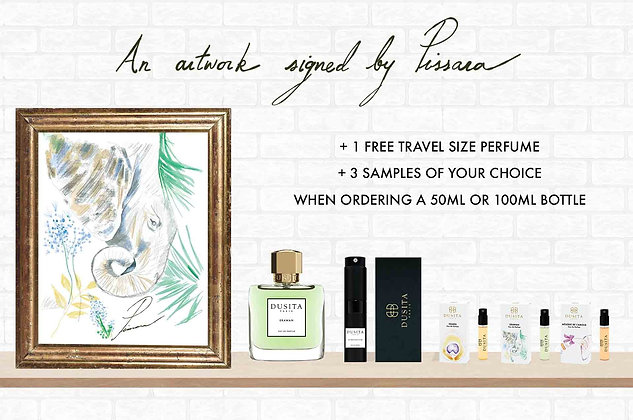 A4 Printed Perfumed Illustration from Pissara