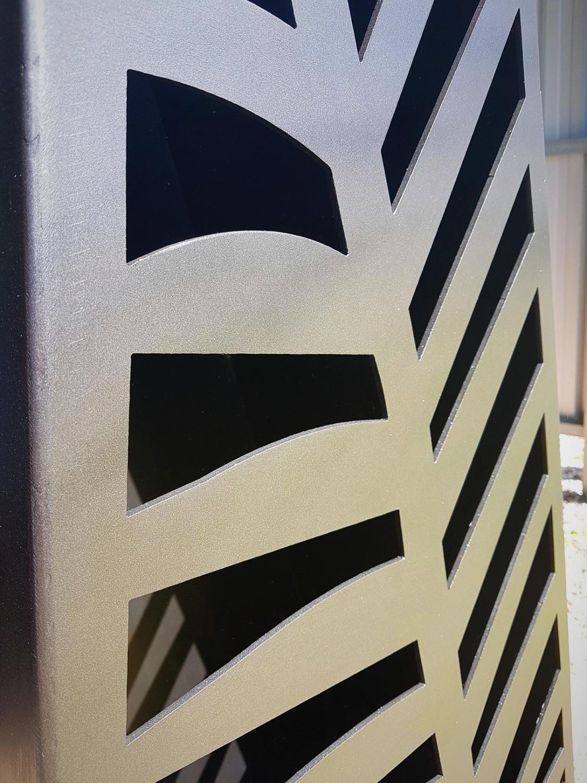NZ fern close up