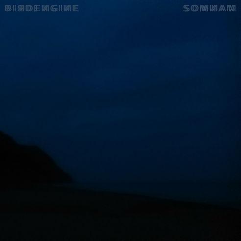 BIRDENGINE - SOMNAM COVER.jpg