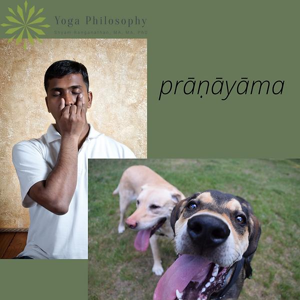 pranayama.png