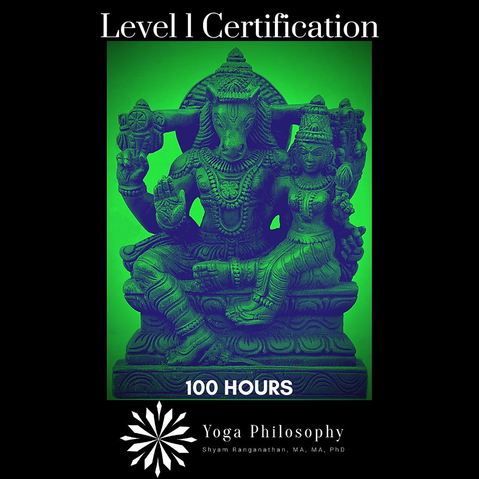 Level 1 Certification (100 Hours)