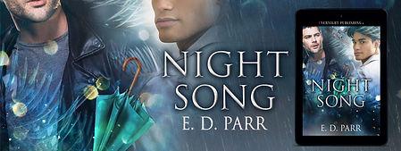 night song-banner3.jpg