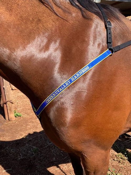 Personalised Buxton Breastplate